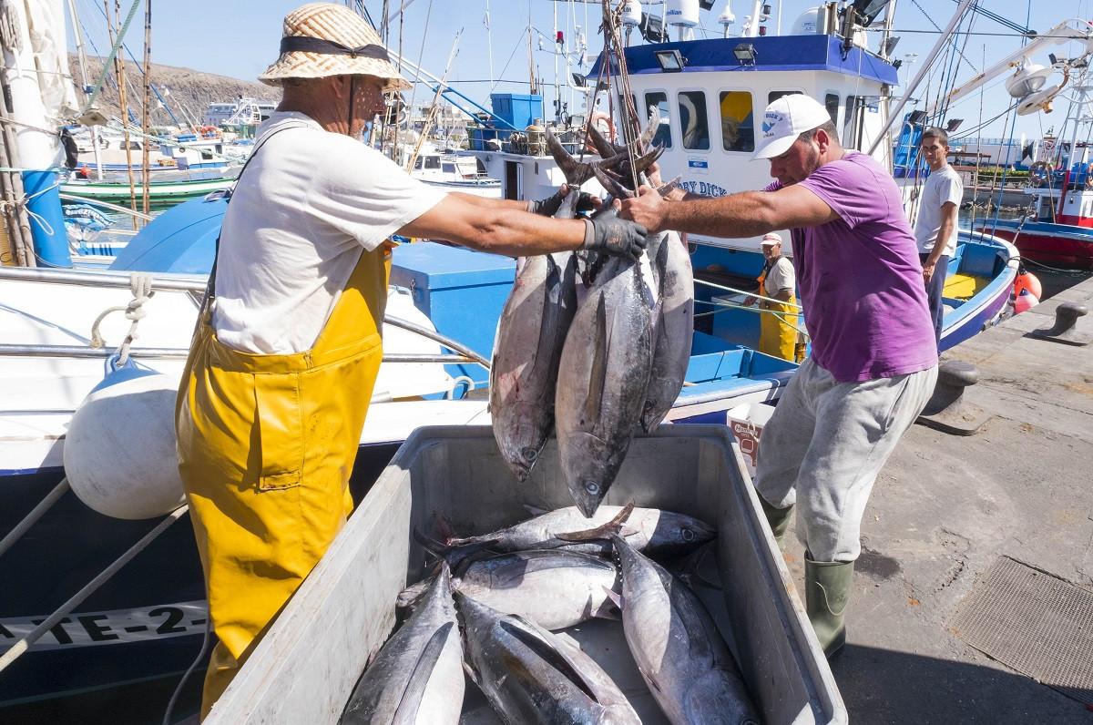 Pesqueroscanarios