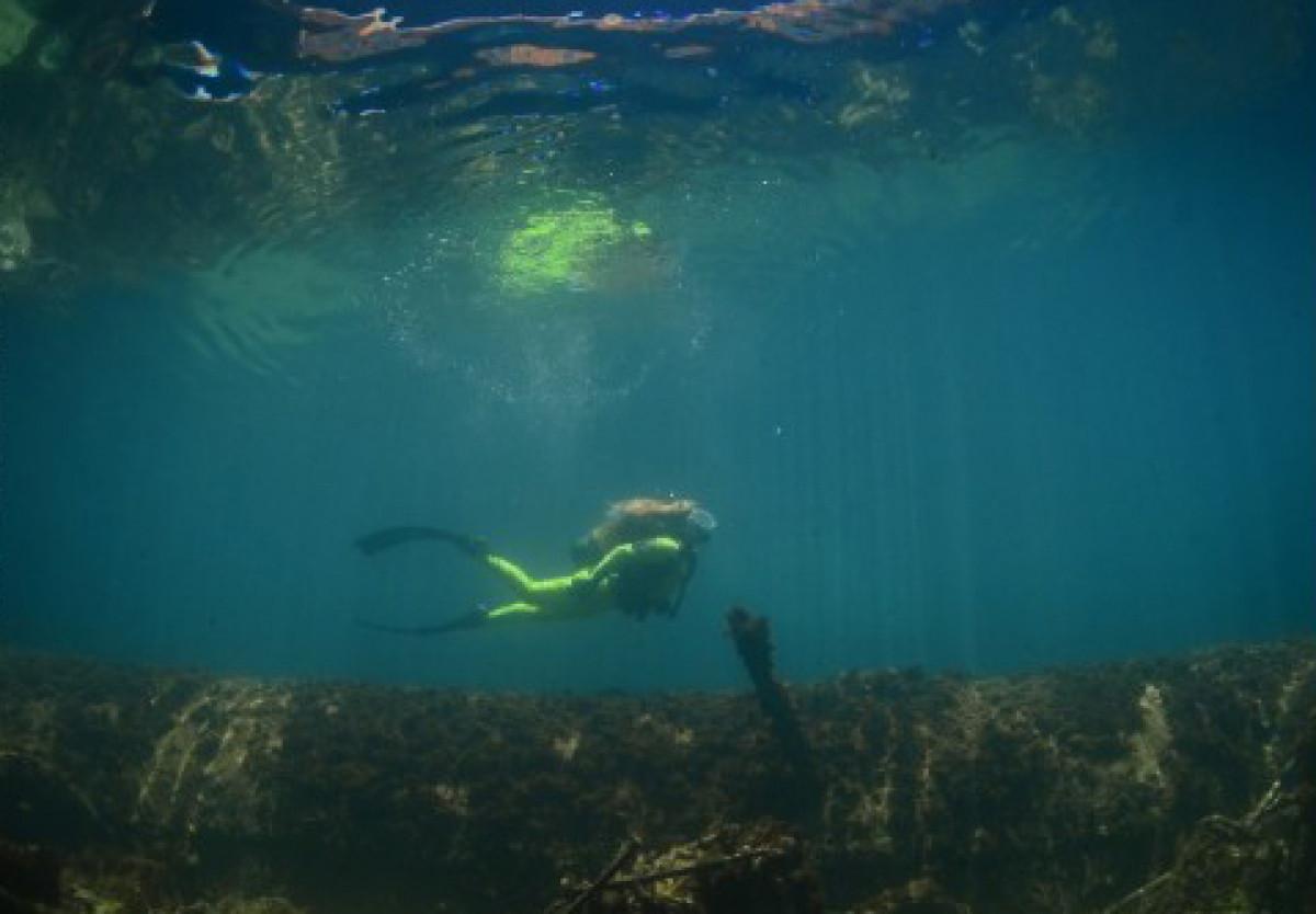 Lanzarote buceo