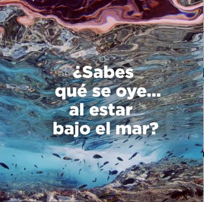 GobCan   sonidos bajo el mar