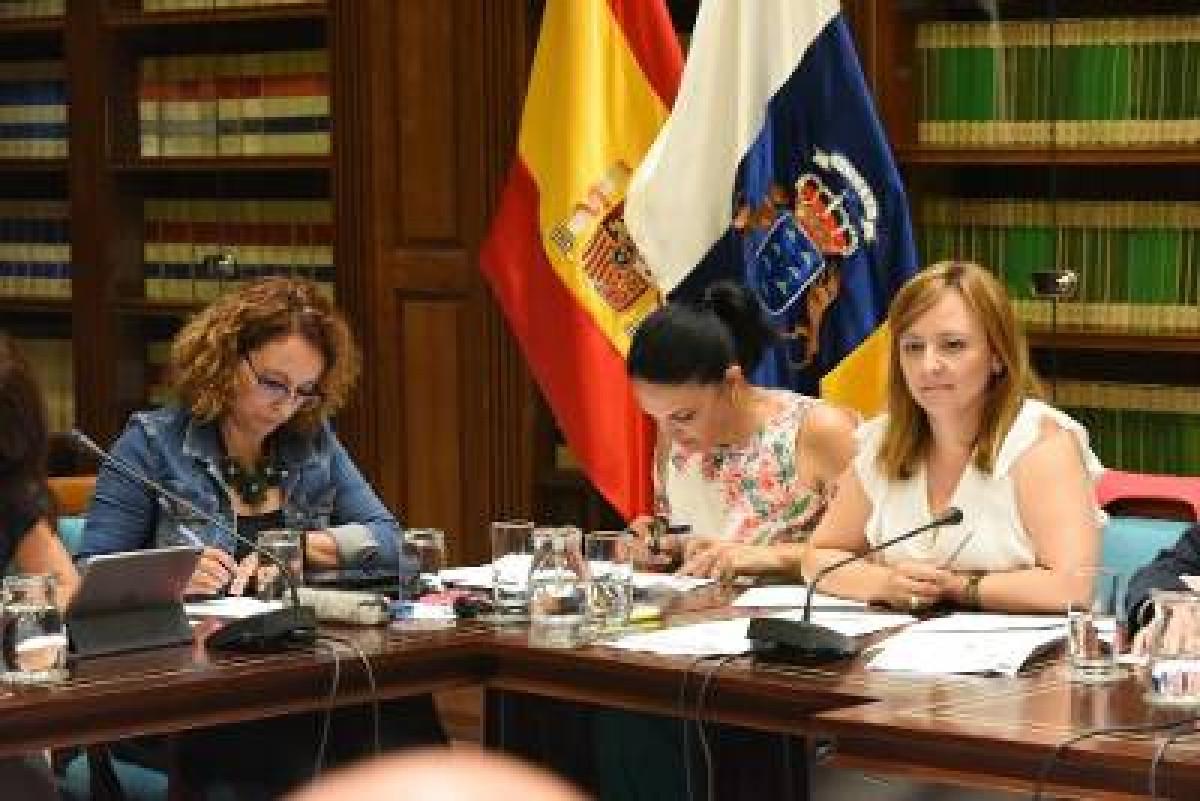 BobCan   Nieves Lady Barreto en el Parlamento de Canarias